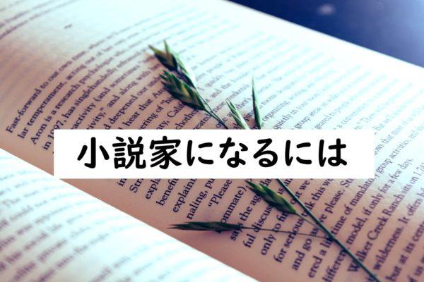 小説家 読書量